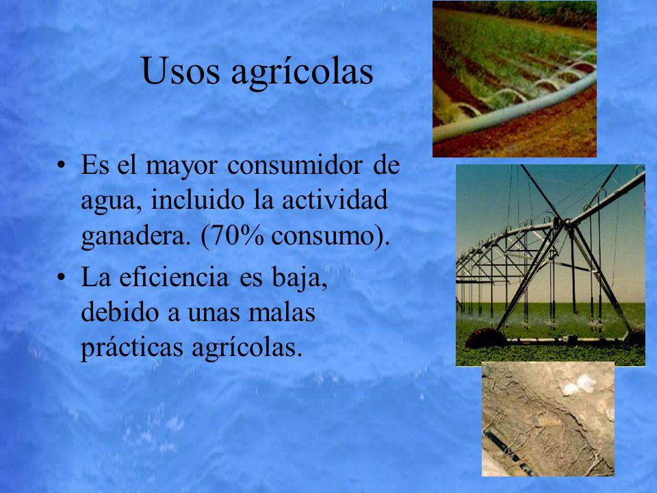 Usos agrícolas Es el mayor consumidor de agua, incluido la actividad ganadera. (70% consumo). La eficiencia es baja, debido a unas malas prácticas agr