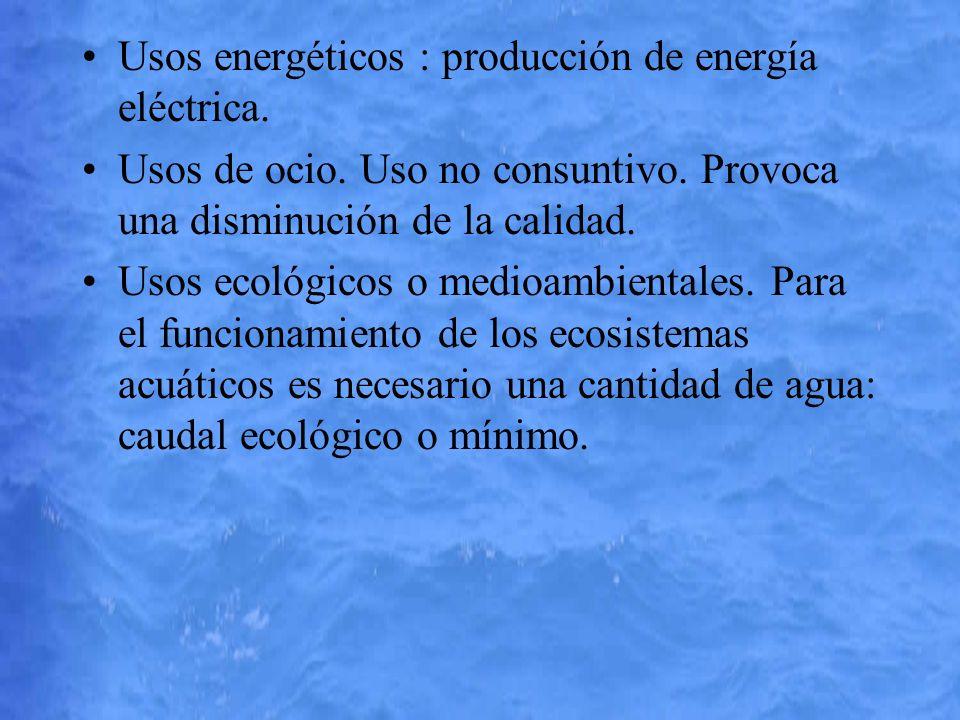 Usos energéticos : producción de energía eléctrica. Usos de ocio. Uso no consuntivo. Provoca una disminución de la calidad. Usos ecológicos o medioamb