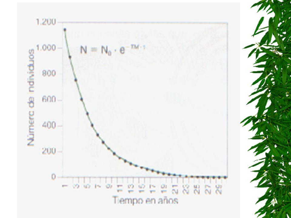 Bucles de realimentación negativa u homeostáticos: Al aumentar A aumenta B, pero el incremento de B hace disminuir a A. Tienden a estabilizar los sist