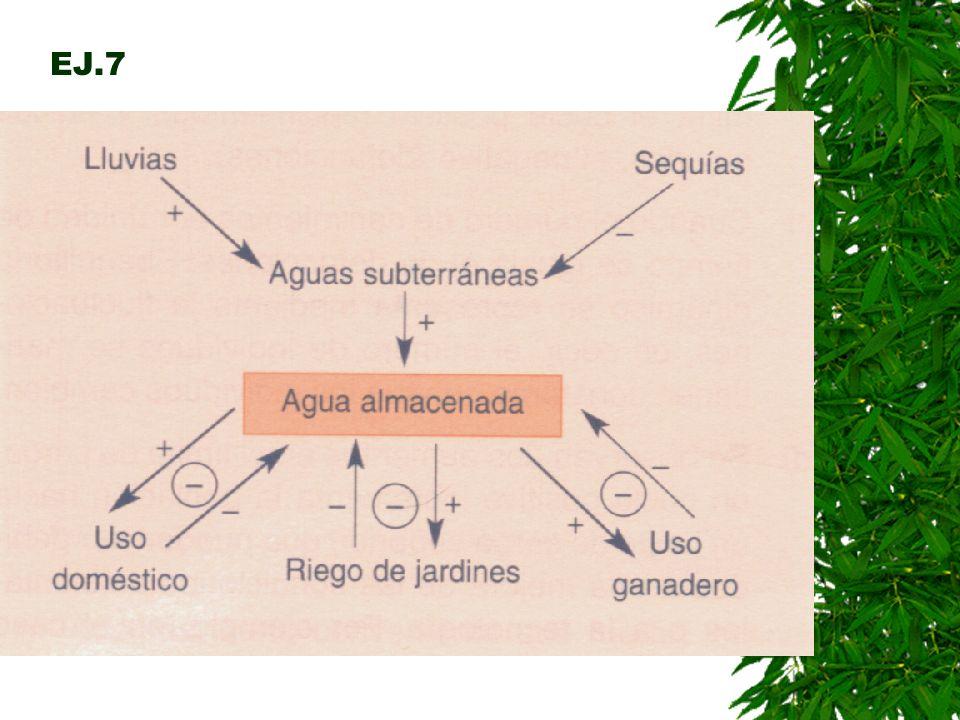 PASOS A SEGUIR PARA MODELAR UN SISTEMA Formación de un modelo mental: Observación, formulación de hipótesis y elección de variables. Diseño de un diag