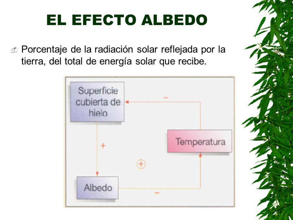 EL EFECTO INVERNADERO Provocado por ciertos gases: vapor de agua, CO2, CH4, N2O.
