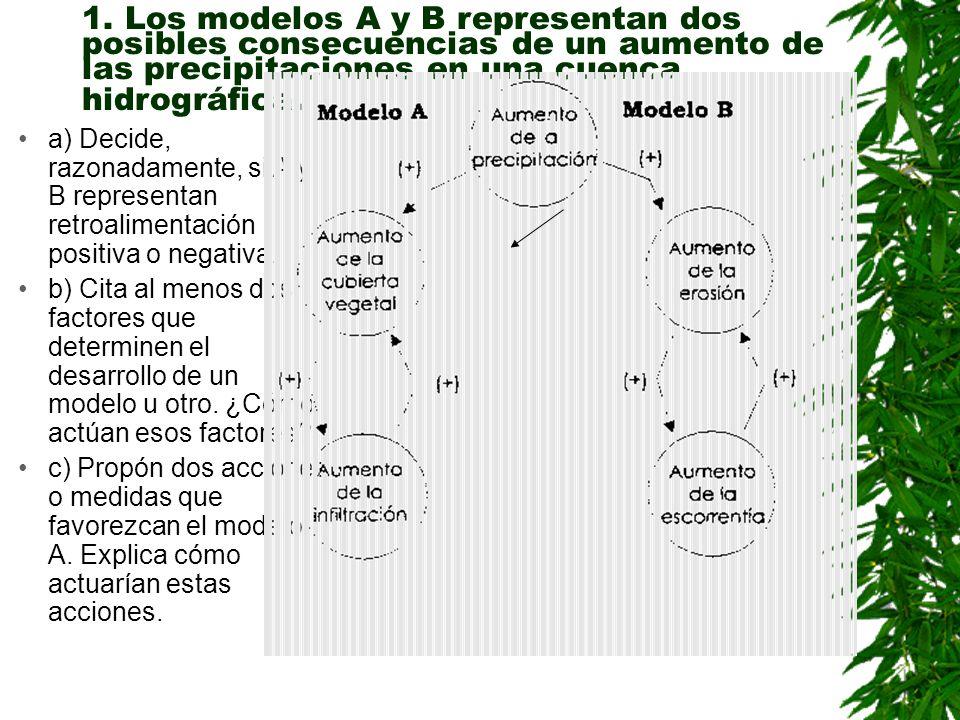 Elabora un diagrama causal o de flujo con cuatro elementos (agua, vegetación, dióxido de carbono, temperatura atmosférica ) en regiones áridas y razon
