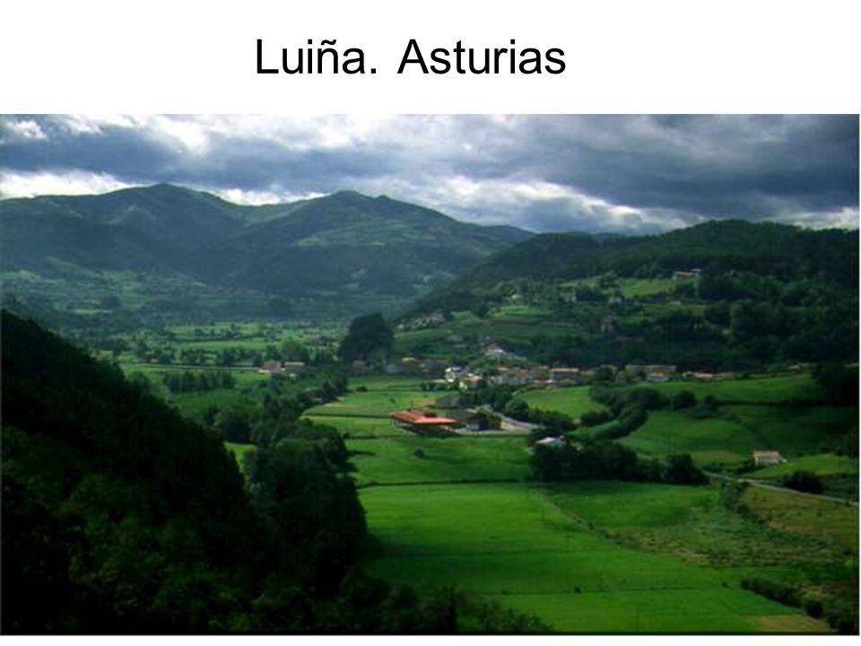 15/02/2014Pilar Morollón IES San Isidro40 Luiña. Asturias
