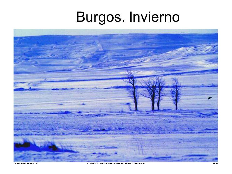15/02/2014Pilar Morollón IES San Isidro58 Burgos. Invierno