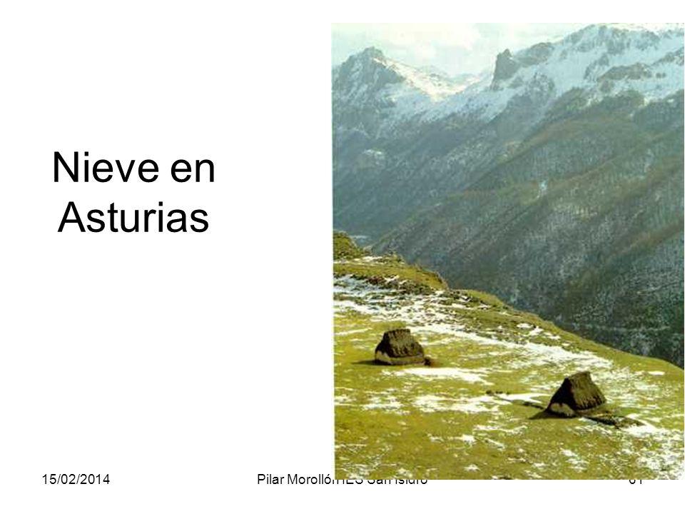 15/02/2014Pilar Morollón IES San Isidro61 Nieve en Asturias