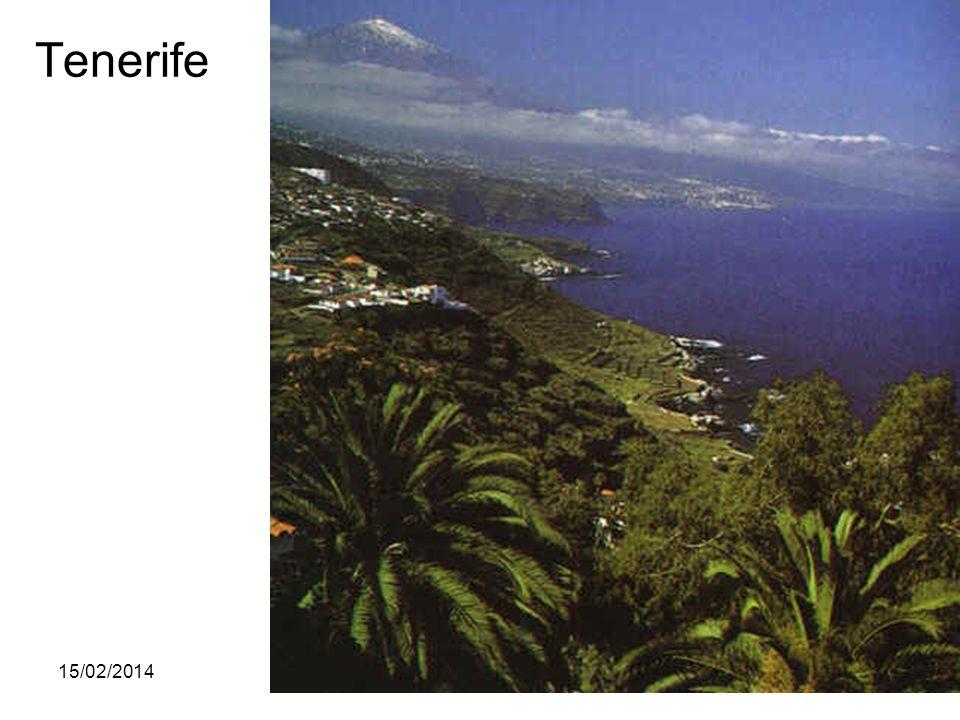 15/02/2014Pilar Morollón IES San Isidro67 Tenerife