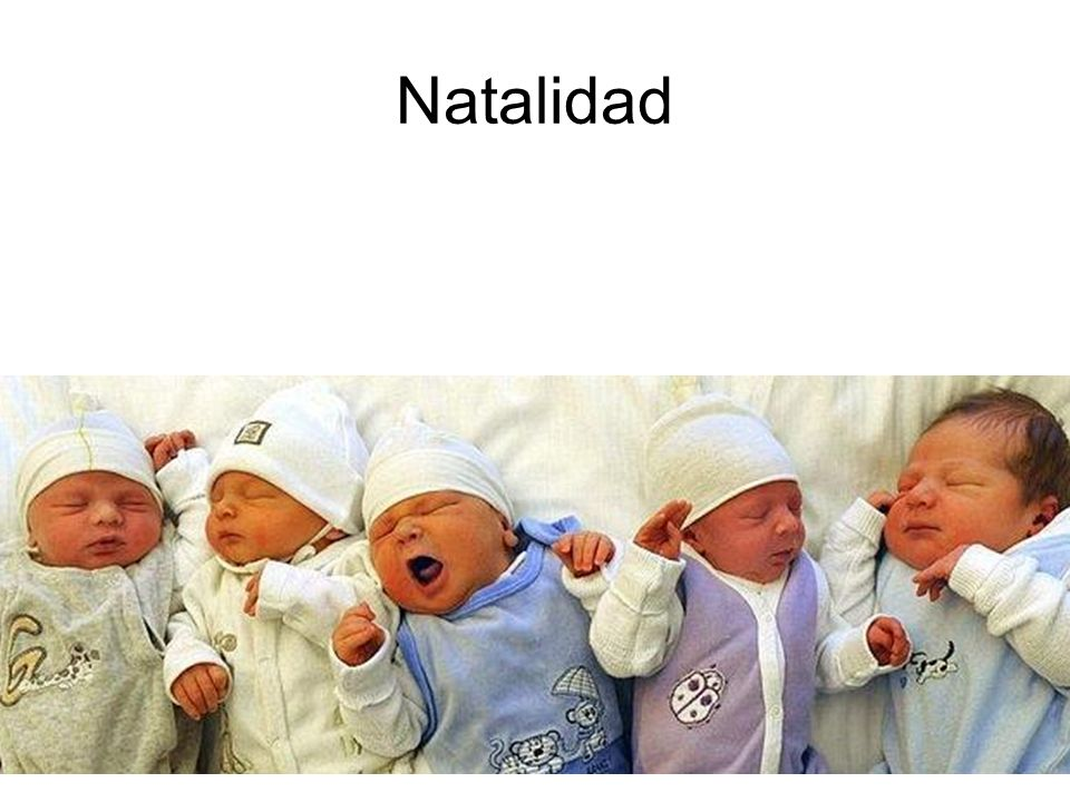 15/02/2014Pilar Morollón IES San Isidro21 Natalidad