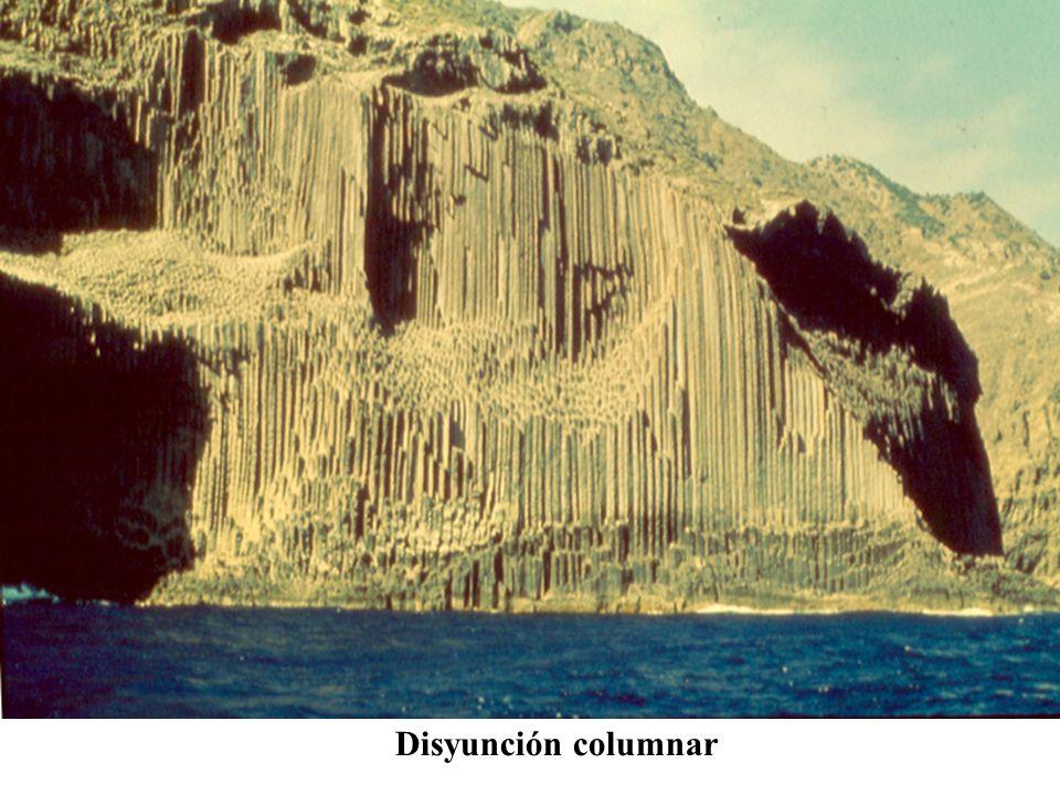 Disyunción columnar