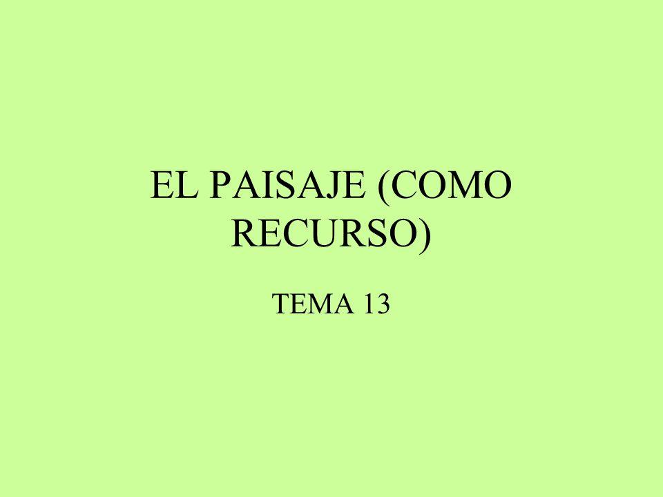 EL PAISAJE (COMO RECURSO) TEMA 13