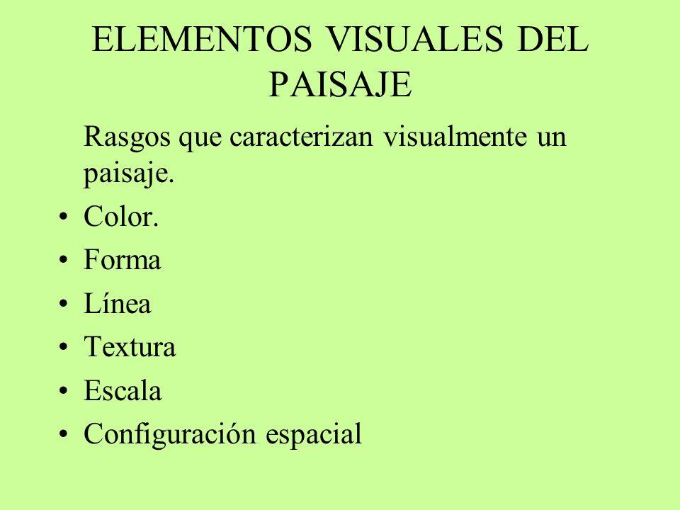 ELEMENTOS VISUALES DEL PAISAJE Rasgos que caracterizan visualmente un paisaje. Color. Forma Línea Textura Escala Configuración espacial