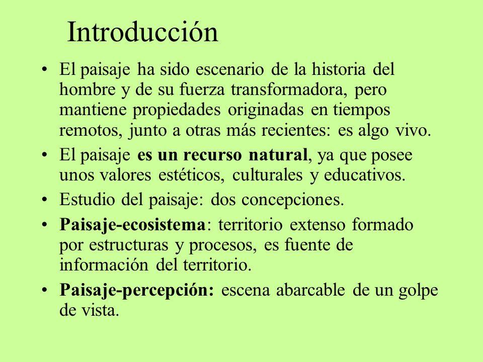 Introducción El paisaje ha sido escenario de la historia del hombre y de su fuerza transformadora, pero mantiene propiedades originadas en tiempos rem