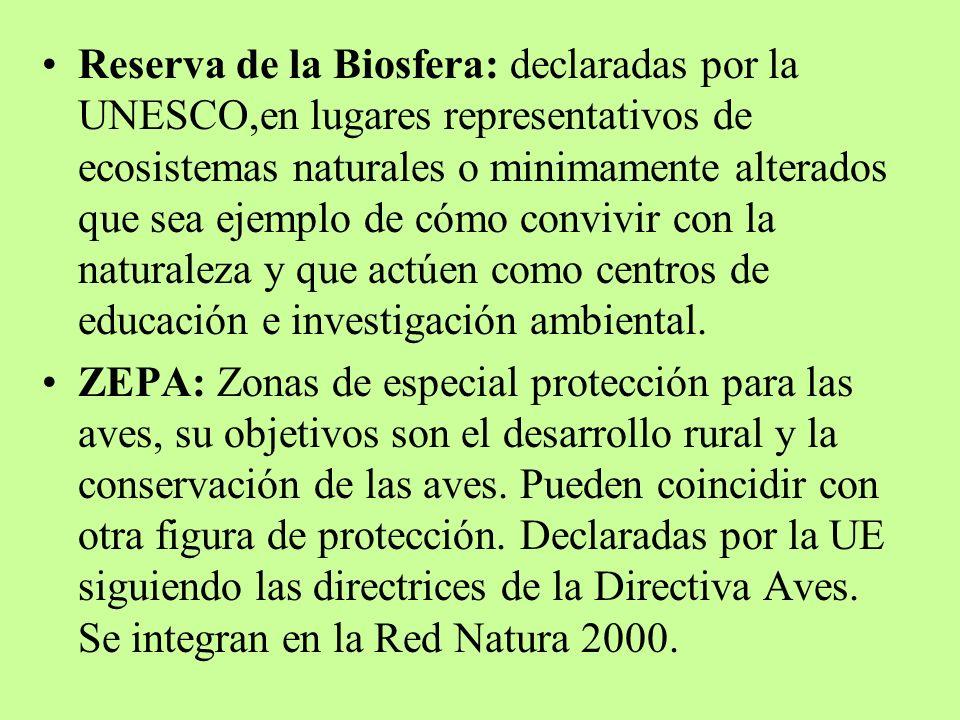 Reserva de la Biosfera: declaradas por la UNESCO,en lugares representativos de ecosistemas naturales o minimamente alterados que sea ejemplo de cómo c