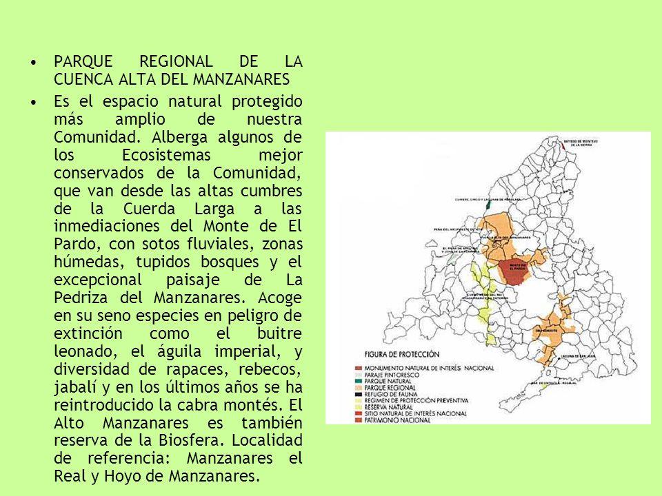 PARQUE REGIONAL DE LA CUENCA ALTA DEL MANZANARES Es el espacio natural protegido más amplio de nuestra Comunidad. Alberga algunos de los Ecosistemas m