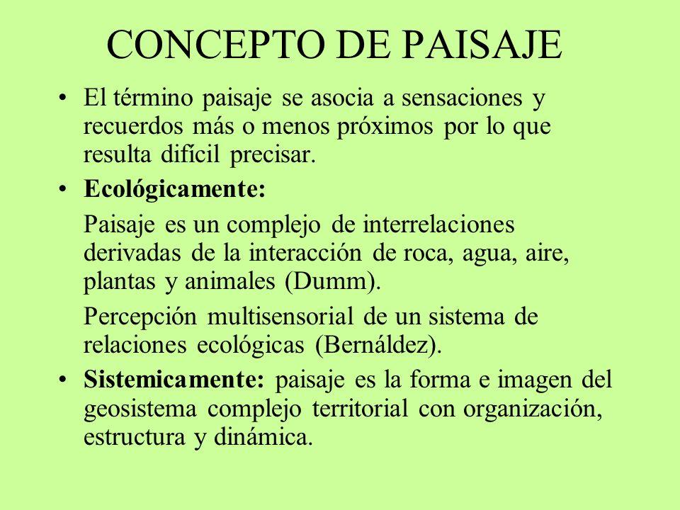 ESPACIOS NATURALES EN ESPAÑA Ley 4/89 de conservación de espacios naturales y la fauna y flora silvestres.