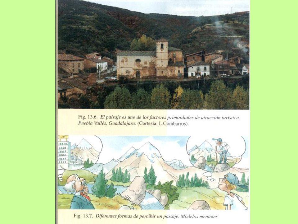 PERCEPCIÓN DEL PAISAJE Informaciones de dos tipos: Concretas: elementos que componen el paisaje (vegetación, relieve y agua).