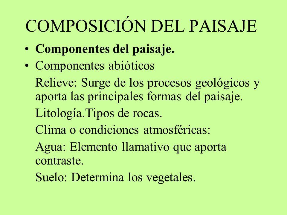 COMPOSICIÓN DEL PAISAJE Componentes del paisaje. Componentes abióticos Relieve: Surge de los procesos geológicos y aporta las principales formas del p