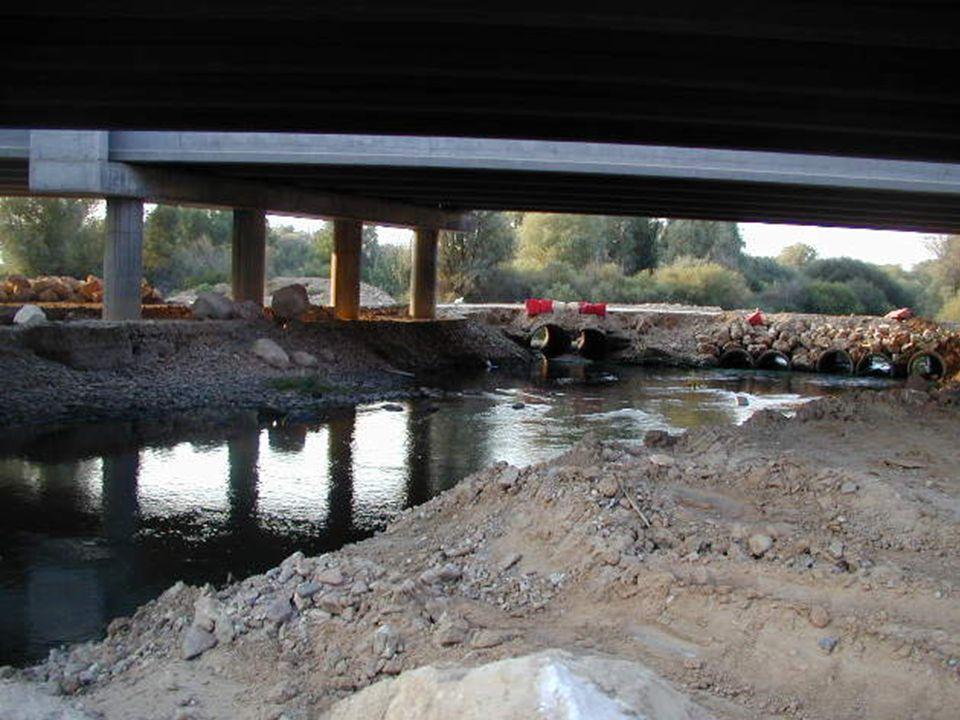 Recuperar el río Jarama En la actualidad, el río Jarama soporta vertidos ilegales de residuos procedentes de industrias y urbanizaciones, las consecue