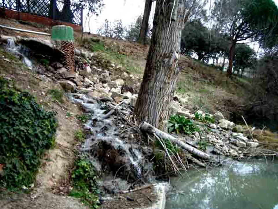 El río Guadarrama y el arroyo de La Torre Las aguas que transportan el río Guadarrama y el arroyo de La Torre en el municipio de Las Rozas, a la altur