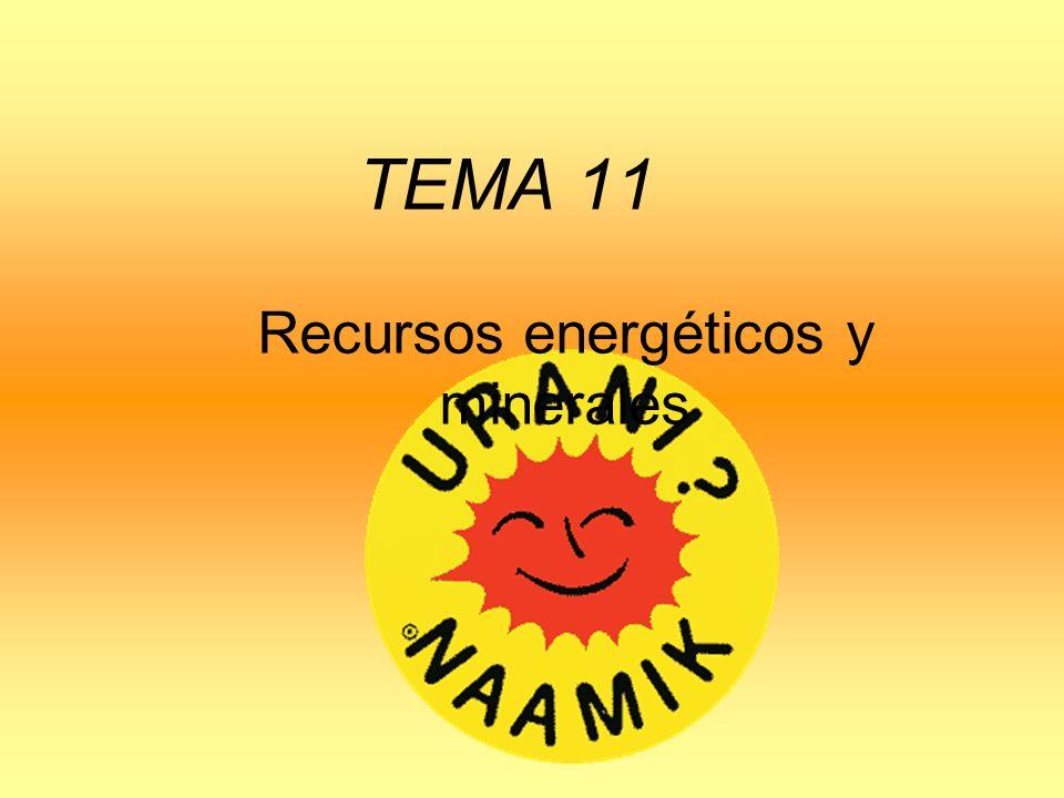 TEMA 11 Recursos energéticos y minerales