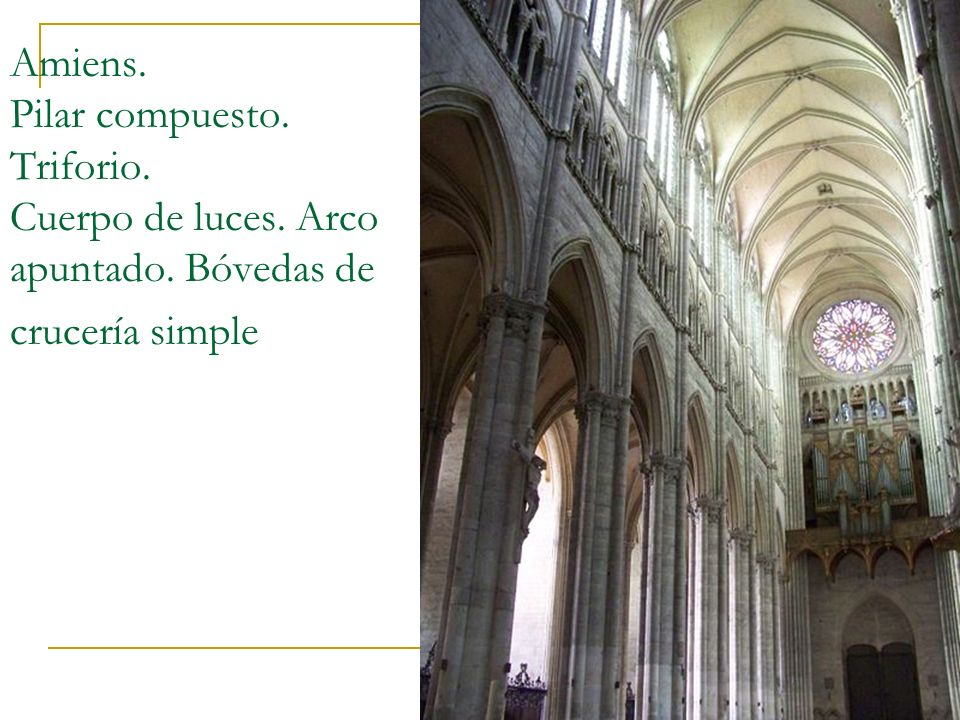 Gótico 13 Amiens. Pilar compuesto. Triforio. Cuerpo de luces. Arco apuntado. Bóvedas de crucería simple