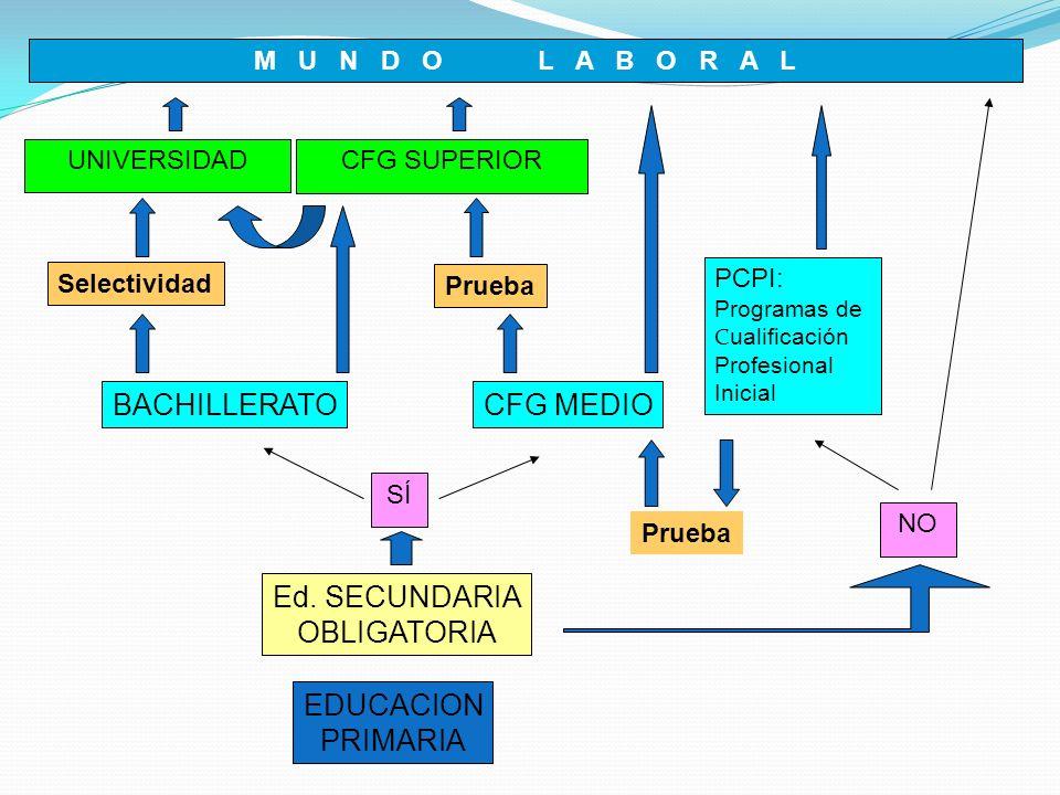 Itinerario educativo del alumno El alumno deberá elegir una modalidad del Bachillerato, en la que formalizará explícitamente su matrícula.