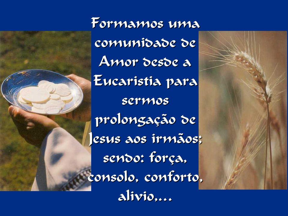 Formamos uma comunidade de Amor desde a Eucaristia para sermos prolongação de Jesus aos irmãos; sendo: força, consolo, conforto, alivio,…