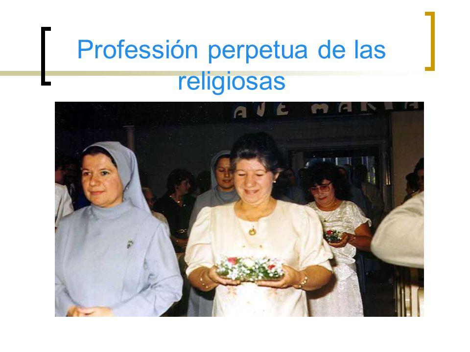 Diferente Actividades de Nuestra Parroquia San Pedro