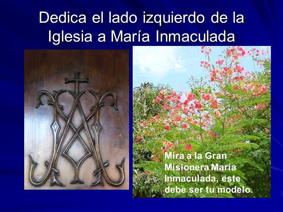 Dedica el lado izquierdo de la Iglesia a María Inmaculada Mira a la Gran Misionera María Inmaculada, este debe ser tu modelo.