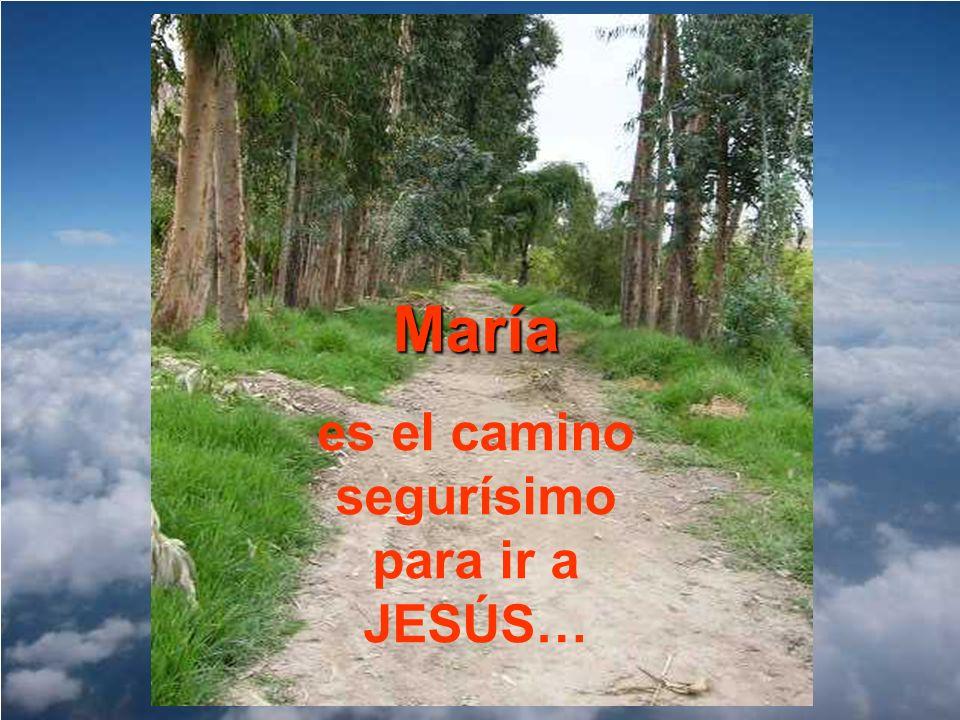 María es el camino segurísimo para ir a JESÚS…