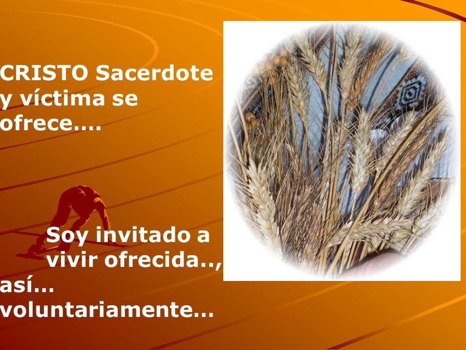 CRISTO Sacerdote y víctima se ofrece…. Soy invitado a vivir ofrecida.., así… voluntariamente…