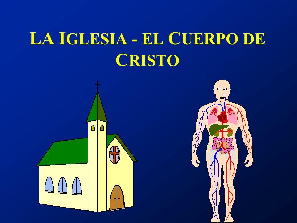 LA I GLESIA - EL C UERPO DE C RISTO