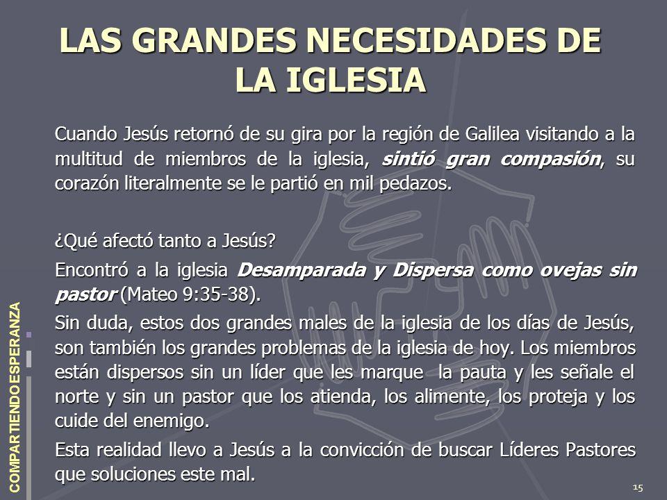 15 COMPARTIENDO ESPERANZA LAS GRANDES NECESIDADES DE LA IGLESIA Cuando Jesús retornó de su gira por la región de Galilea visitando a la multitud de mi