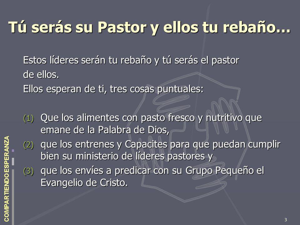 3 COMPARTIENDO ESPERANZA Tú serás su Pastor y ellos tu rebaño… Estos líderes serán tu rebaño y tú serás el pastor de ellos. Ellos esperan de ti, tres