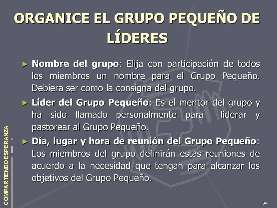 30 COMPARTIENDO ESPERANZA ORGANICE EL GRUPO PEQUEÑO DE LÍDERES Nombre del grupo: Elija con participación de todos los miembros un nombre para el Grupo