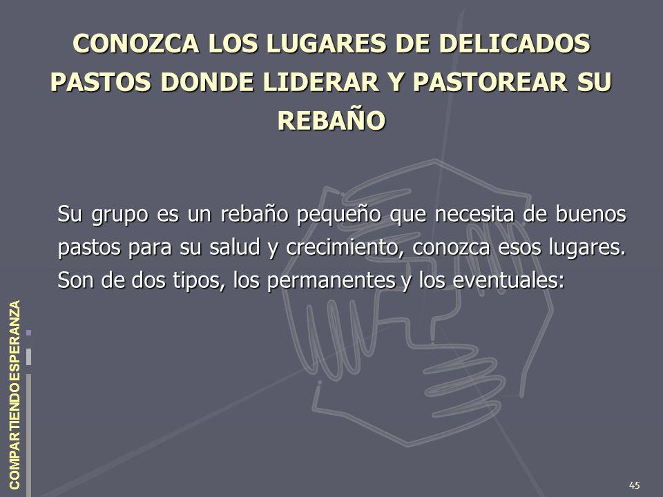 45 COMPARTIENDO ESPERANZA CONOZCA LOS LUGARES DE DELICADOS PASTOS DONDE LIDERAR Y PASTOREAR SU REBAÑO Su grupo es un rebaño pequeño que necesita de bu