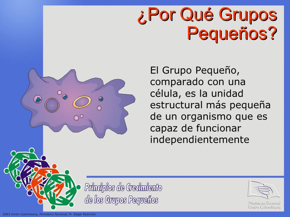 ¿Por Qué Grupos Pequeños? El Grupo Pequeño, comparado con una célula, es la unidad estructural más pequeña de un organismo que es capaz de funcionar i
