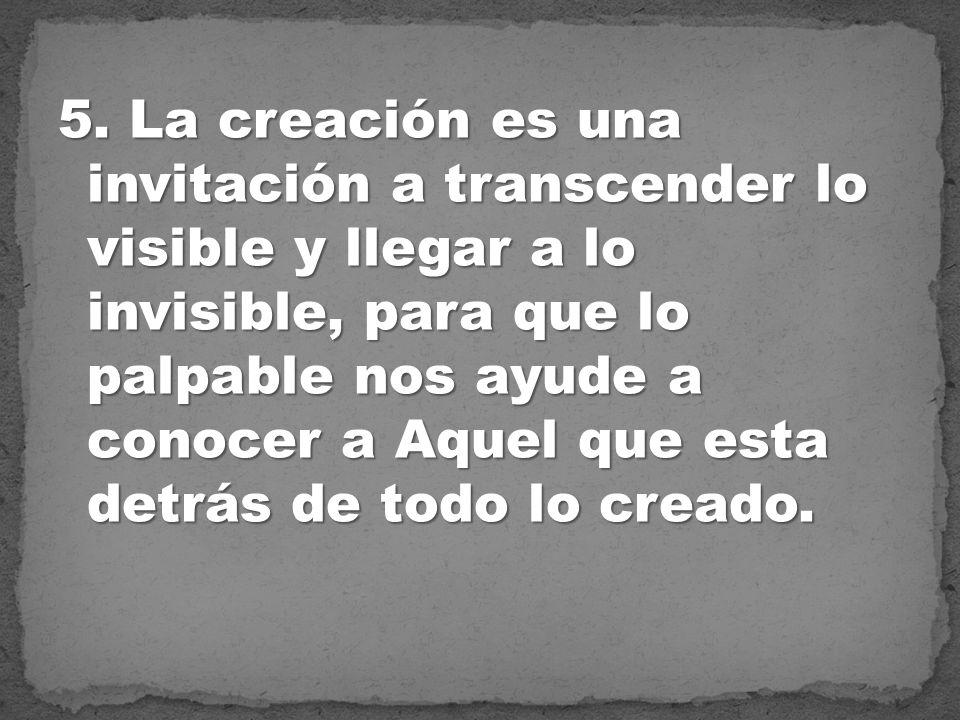 5. La creación es una invitación a transcender lo visible y llegar a lo invisible, para que lo palpable nos ayude a conocer a Aquel que esta detrás de
