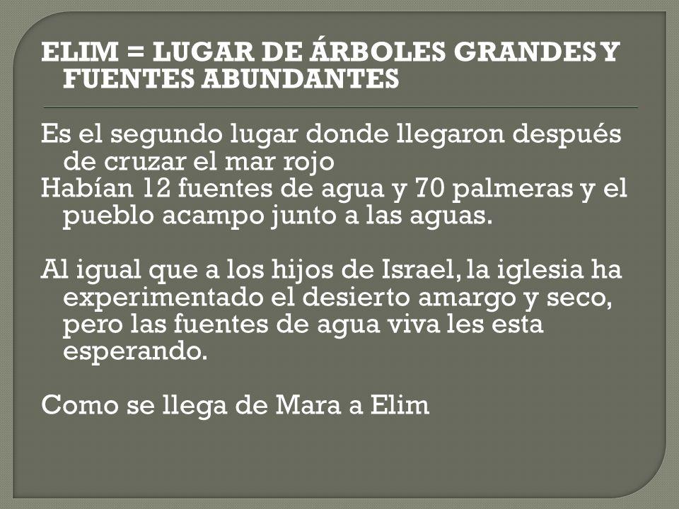 ELIM = LUGAR DE ÁRBOLES GRANDES Y FUENTES ABUNDANTES Es el segundo lugar donde llegaron después de cruzar el mar rojo Habían 12 fuentes de agua y 70 p