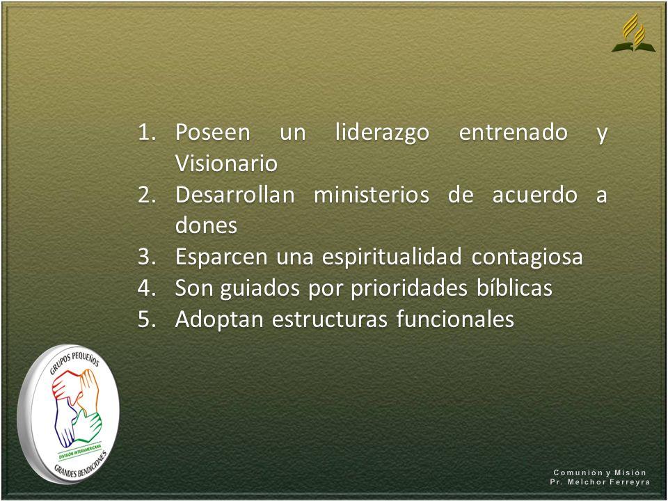 1.Poseen un liderazgo entrenado y Visionario 2.Desarrollan ministerios de acuerdo a dones 3.Esparcen una espiritualidad contagiosa 4.Son guiados por p
