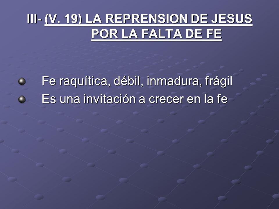 III- (V. 19) LA REPRENSION DE JESUS POR LA FALTA DE FE Fe raquítica, débil, inmadura, frágil Es una invitación a crecer en la fe