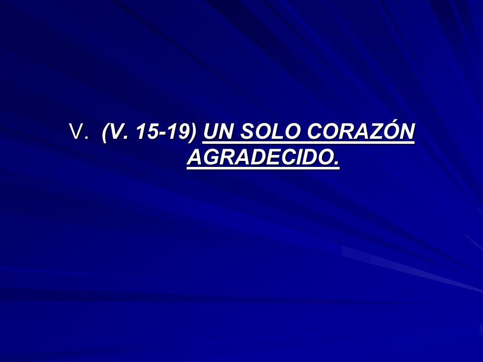 V. (V. 15-19) UN SOLO CORAZÓN AGRADECIDO.