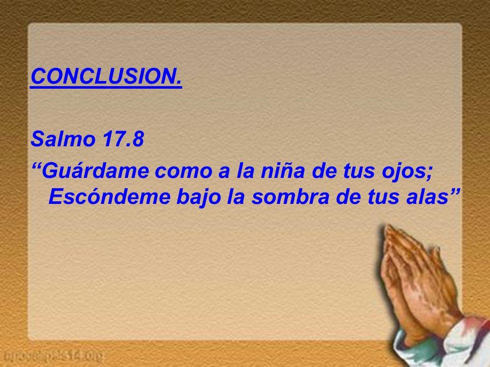 CONCLUSION. Salmo 17.8 Guárdame como a la niña de tus ojos; Escóndeme bajo la sombra de tus alas