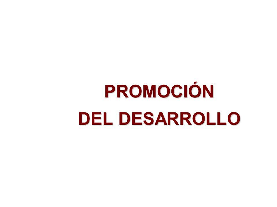 PROMOCIÓN DEL DESARROLLO