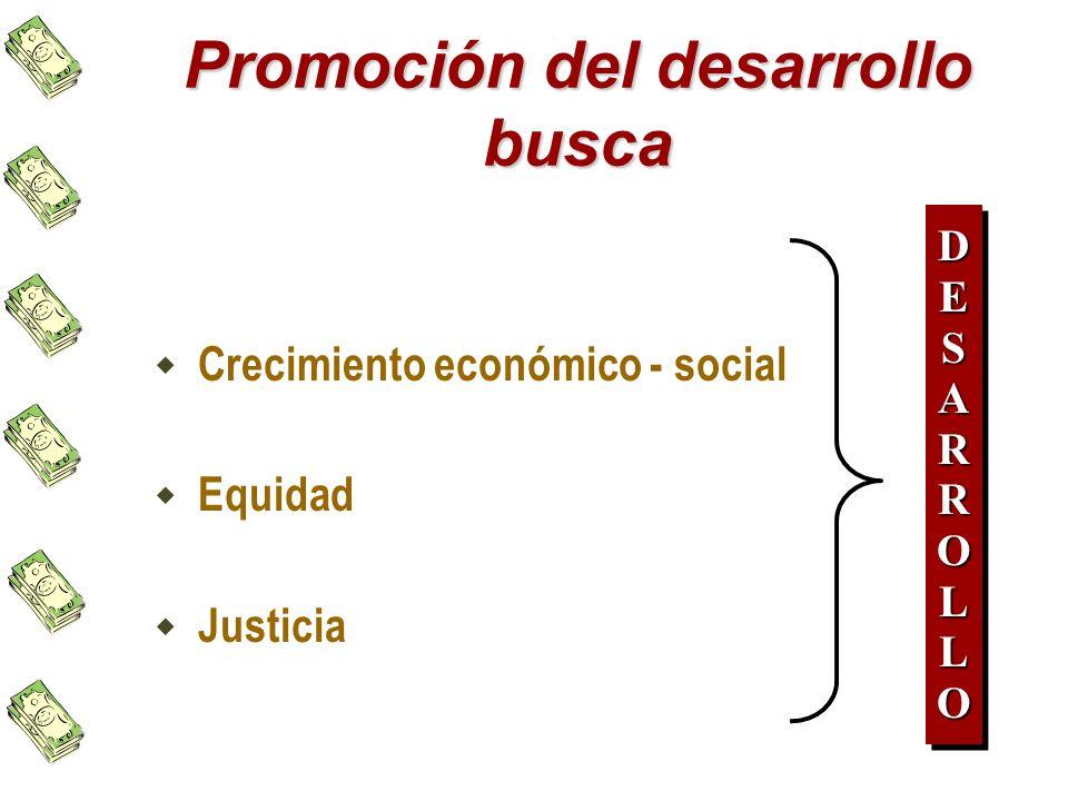 Promoción del desarrollo busca Crecimiento económico - social Equidad Justicia DESARROLLODESARROLLO