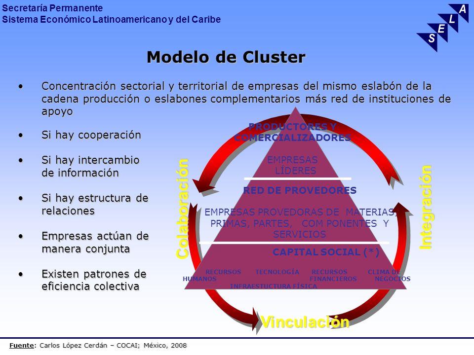 Secretaría Permanente Sistema Económico Latinoamericano y del Caribe GESTION DEL CLUSTER Los actores del conglomerado deben tener una Comisión para la toma de decisiones periódicas.