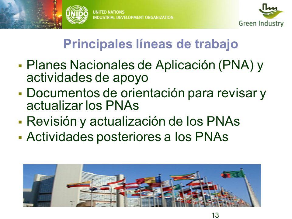 13 Principales líneas de trabajo Planes Nacionales de Aplicación (PNA) y actividades de apoyo Documentos de orientación para revisar y actualizar los