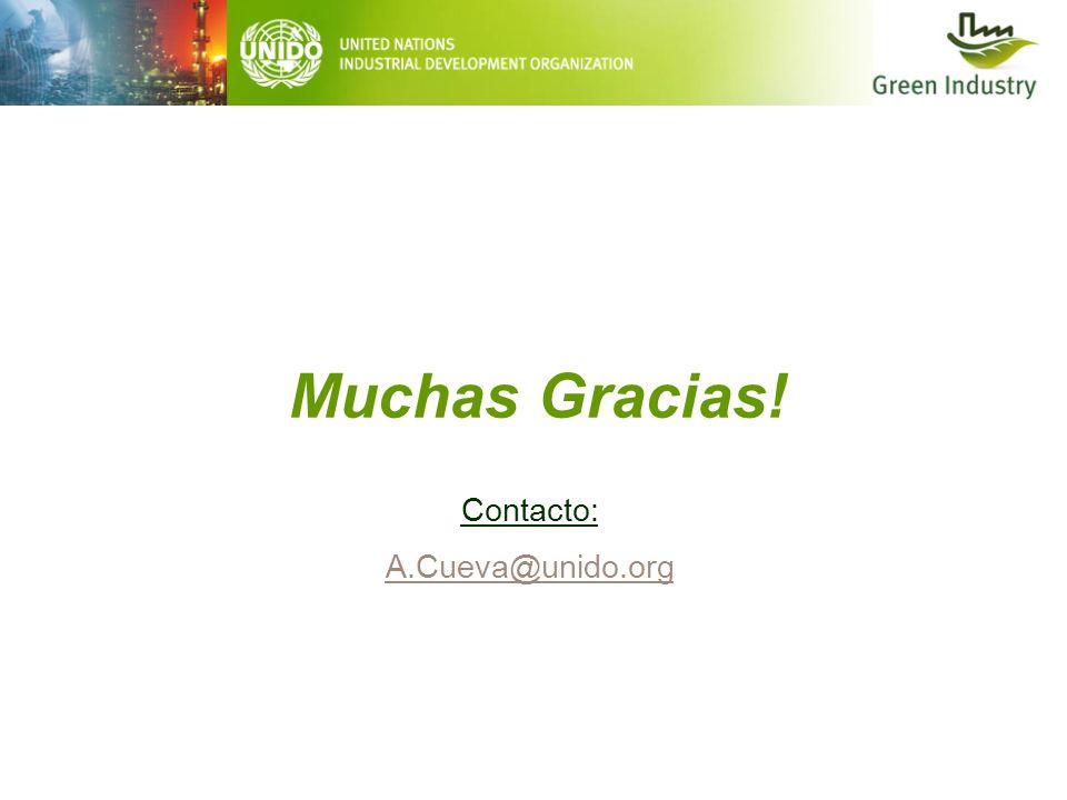 Muchas Gracias! Contacto: A.Cueva@unido.org A.Cueva@unido.org