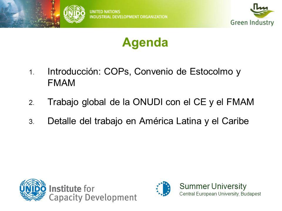 Agenda 1. Introducción: COPs, Convenio de Estocolmo y FMAM 2. Trabajo global de la ONUDI con el CE y el FMAM 3. Detalle del trabajo en América Latina