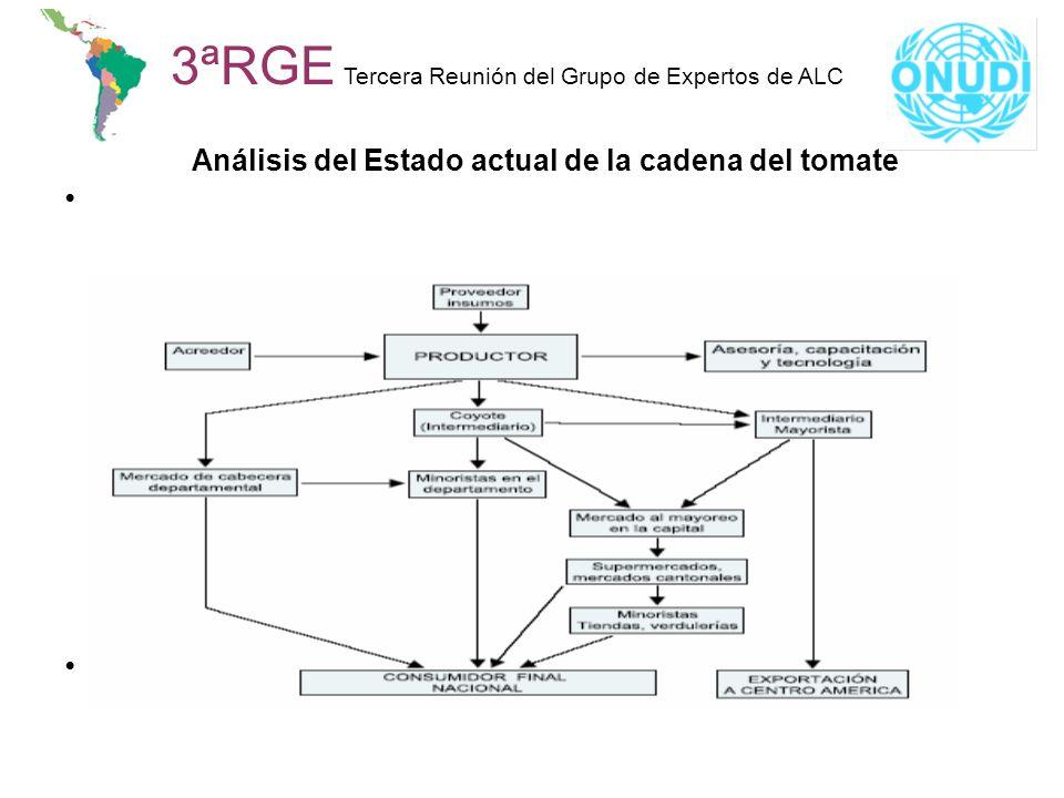 Análisis del Estado actual de la cadena del tomate 3ªRGE Tercera Reunión del Grupo de Expertos de ALC L
