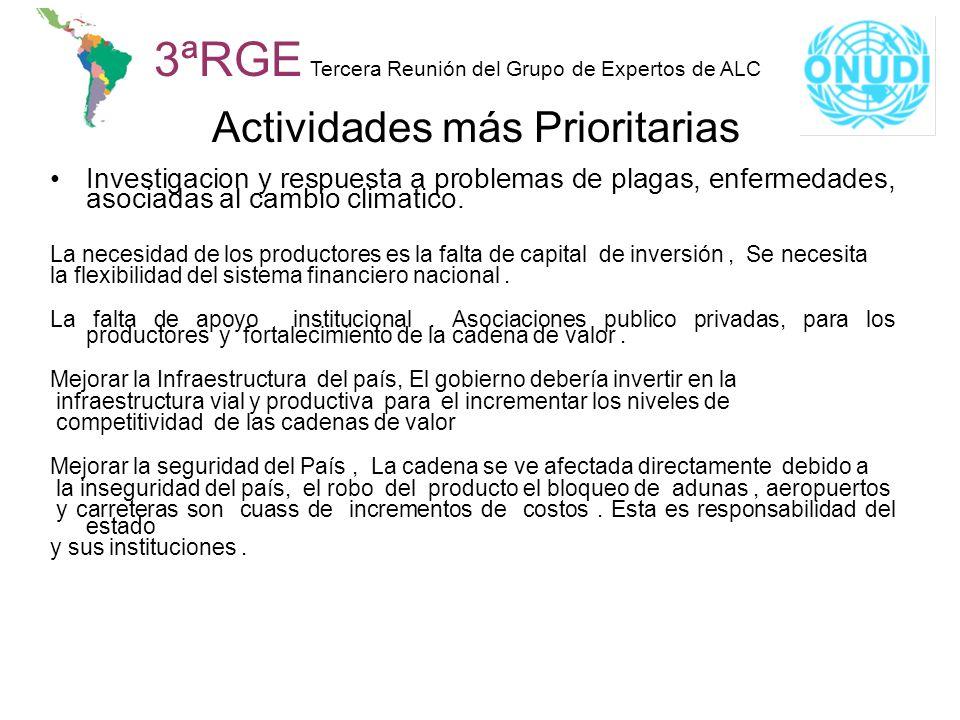 3ªRGE Tercera Reunión del Grupo de Expertos de ALC Actividades más Prioritarias Investigacion y respuesta a problemas de plagas, enfermedades, asociad